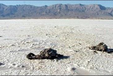Güney Azerbaycan'da Urmu Gölü Meselesi