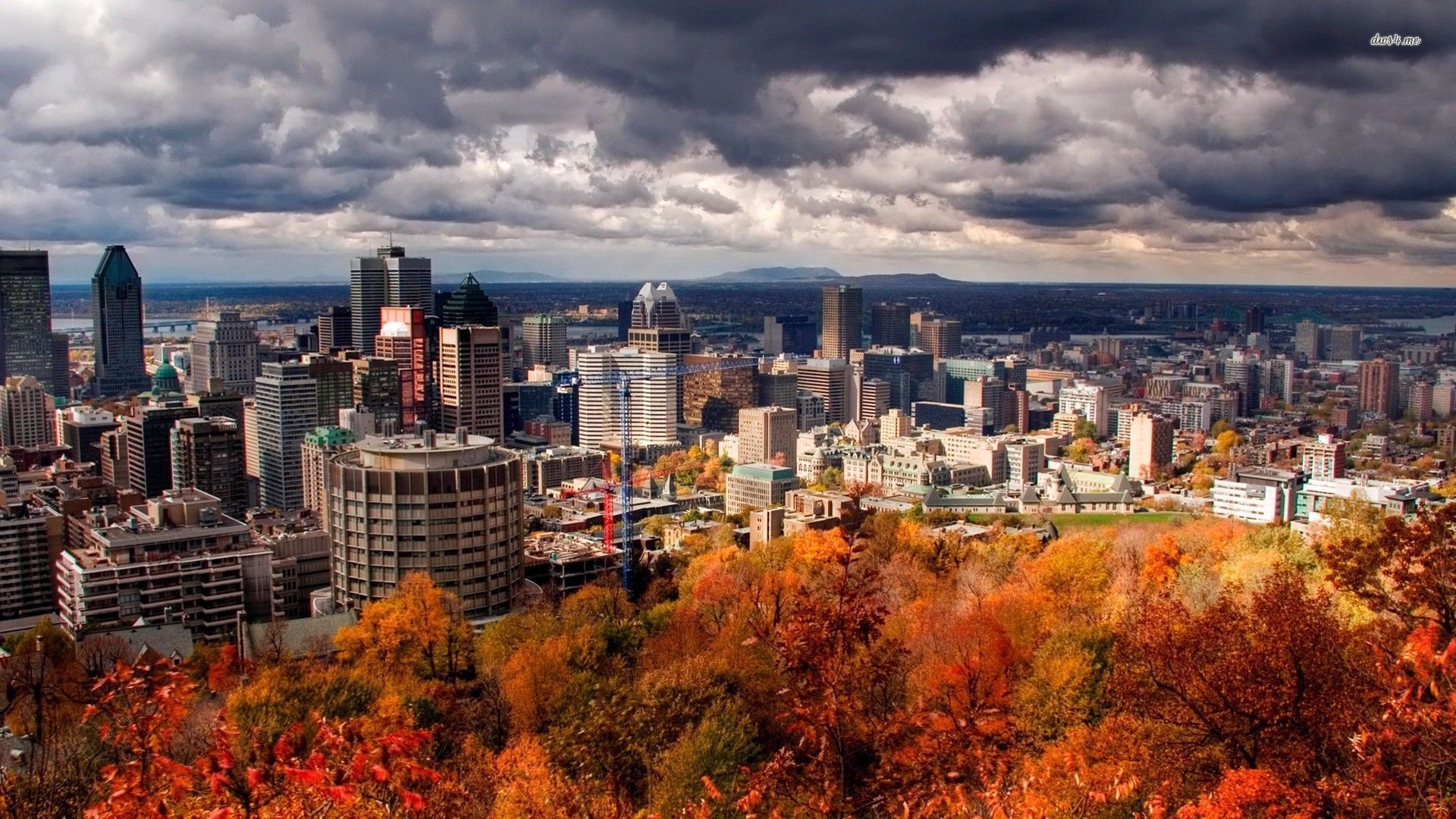 montreal-sight-seeing-montroyal